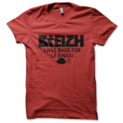 Tee-shirt original rigolo Breizh